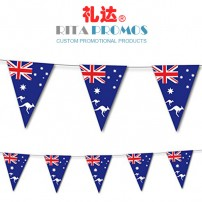 Advertising Flag Outdoor Banner Polyester Bunting(RPPBF-001)